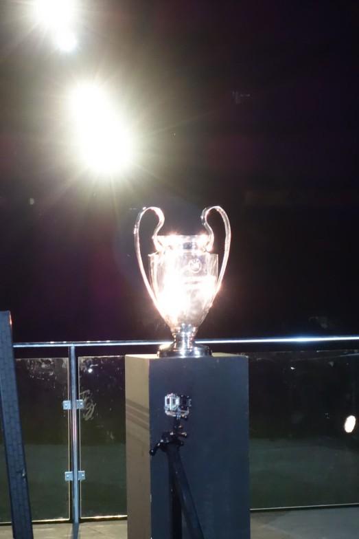 262 CHAMPION CUP