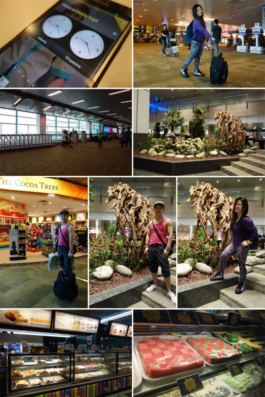 295 ARRIVE CHANGI AIRPORT